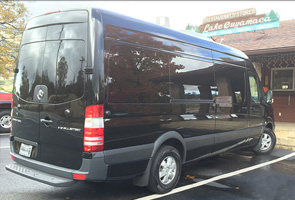 12 seater sprinter van back