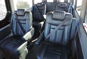 business sprinter van rentals